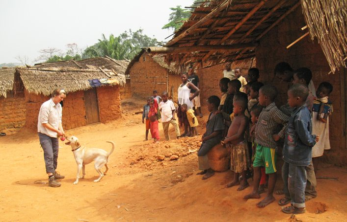 Working Dogs For Conservation In Cameroon Mermaid