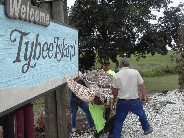 Tybee Welcomes Two For The Road 4
