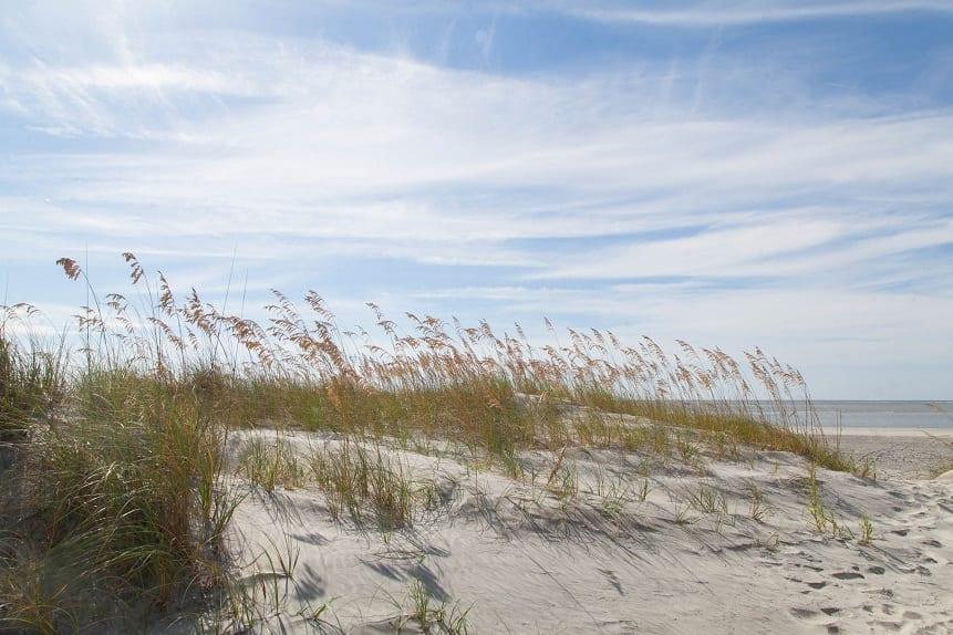 tybee island sand dune